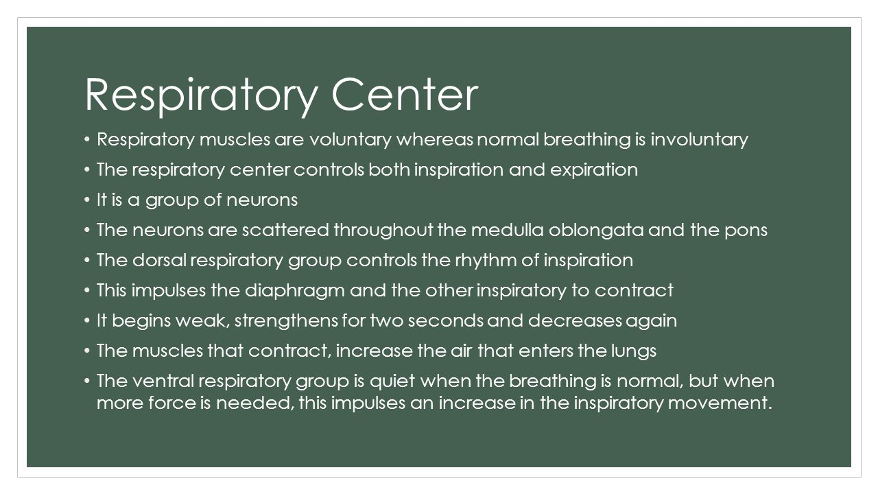 Respiratory Center Respiratory muscles are voluntary whereas normal breathing is involuntary.