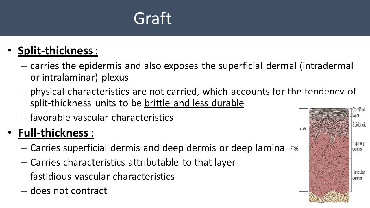 Graft Split-thickness : Full-thickness :