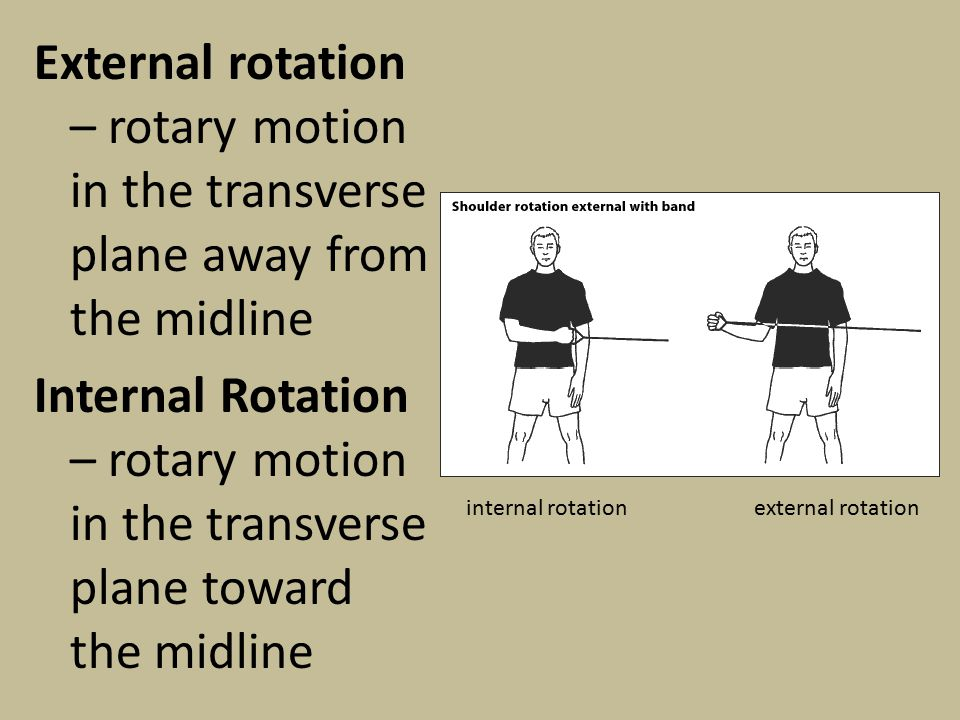 External rotation – rotary motion in the transverse plane away from the midline