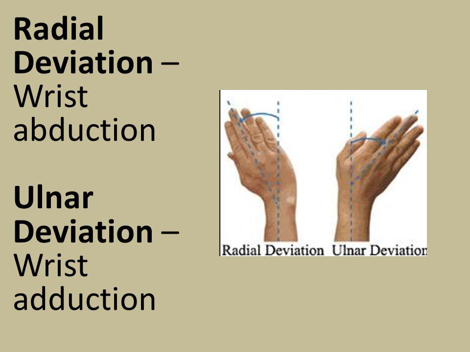 Radial Deviation – Wrist abduction