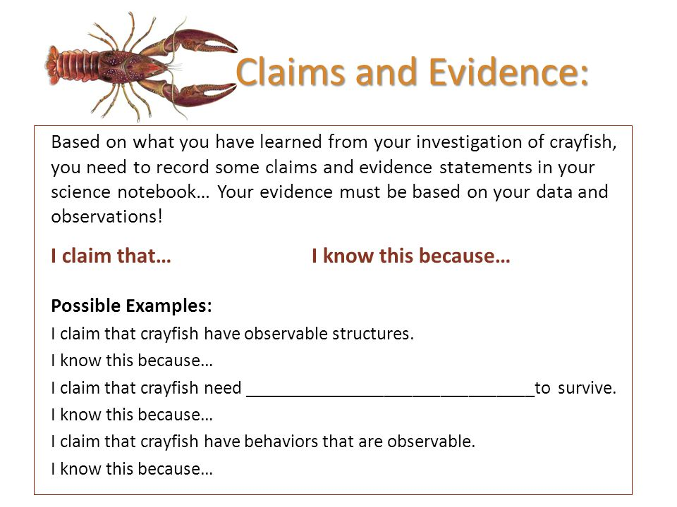Claims and Evidence: I claim that… I know this because…