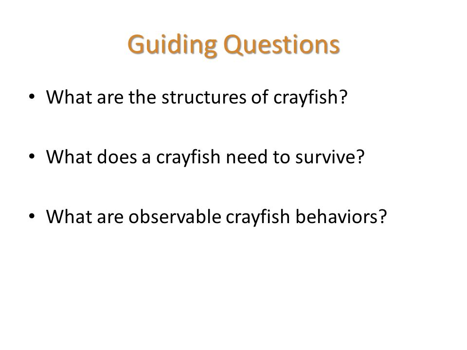 Guiding Questions What are the structures of crayfish