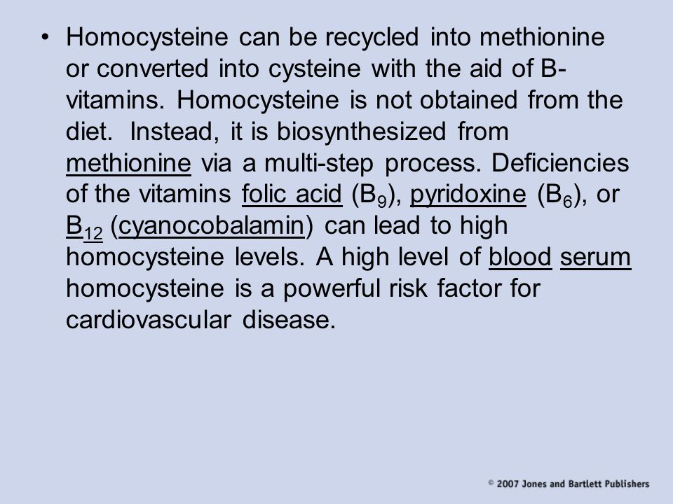 Homocysteine can be recycled into methionine or converted into cysteine with the aid of B-vitamins.