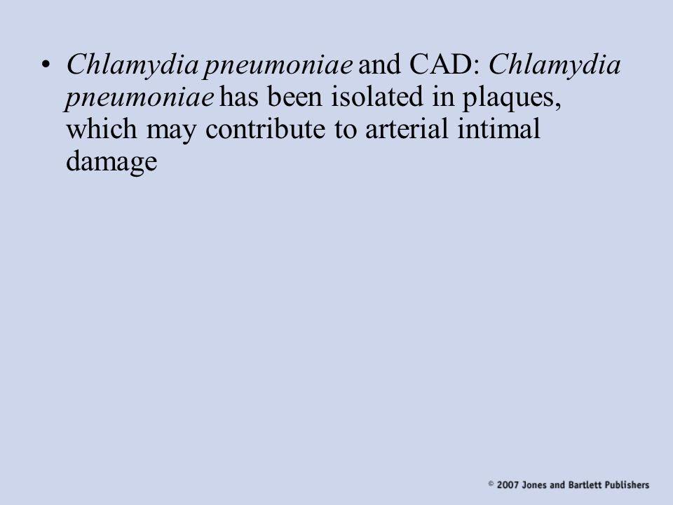 Chlamydia pneumoniae and CAD: Chlamydia pneumoniae has been isolated in plaques, which may contribute to arterial intimal damage