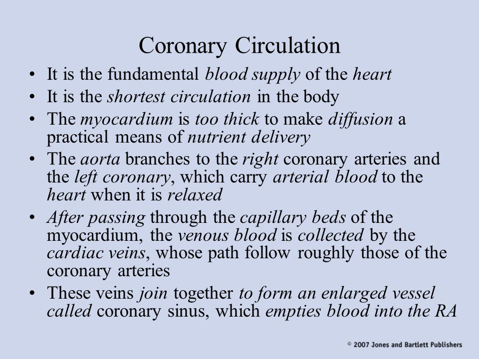 Coronary Circulation It is the fundamental blood supply of the heart