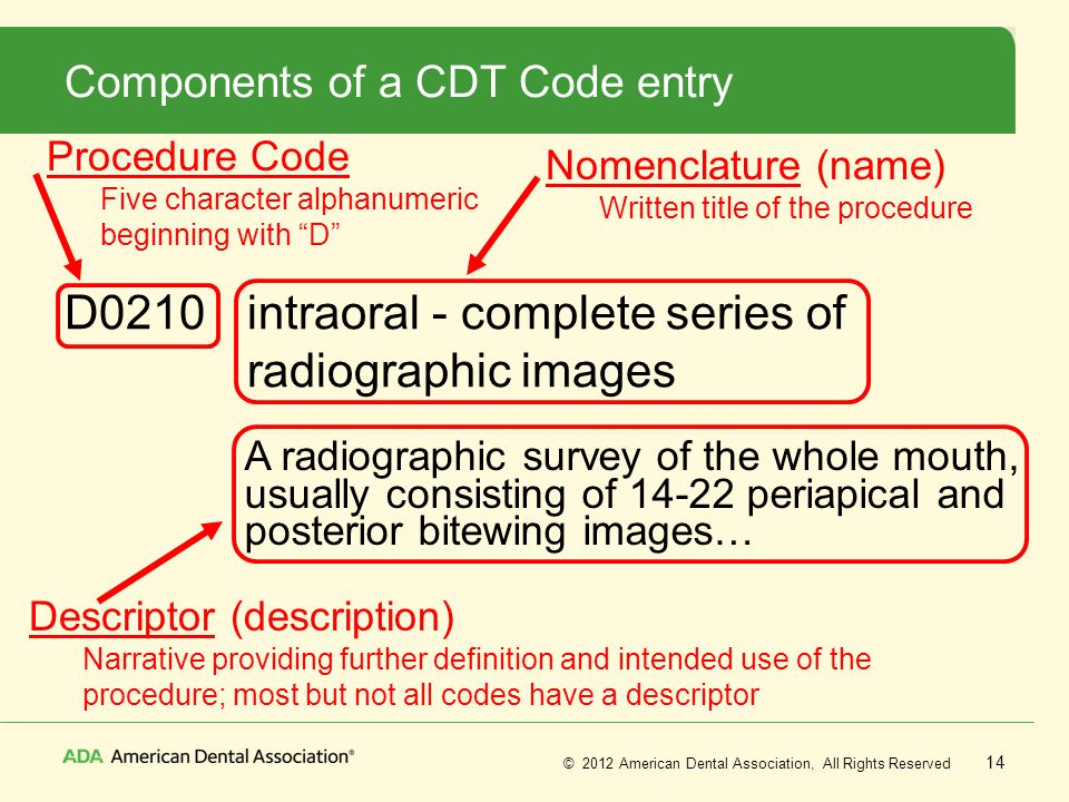 Components of a CDT Code entry