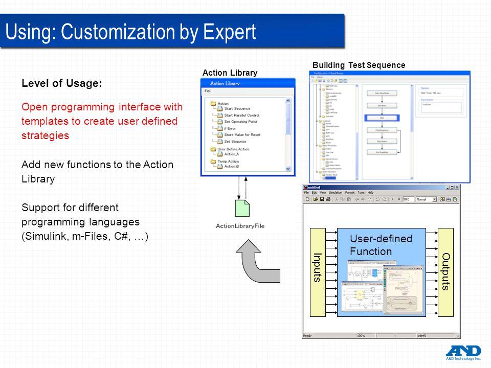 Using: Customization by Expert