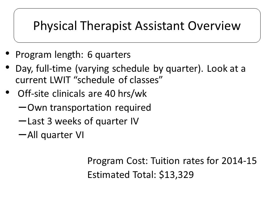 Physical Therapist Assistant Overview