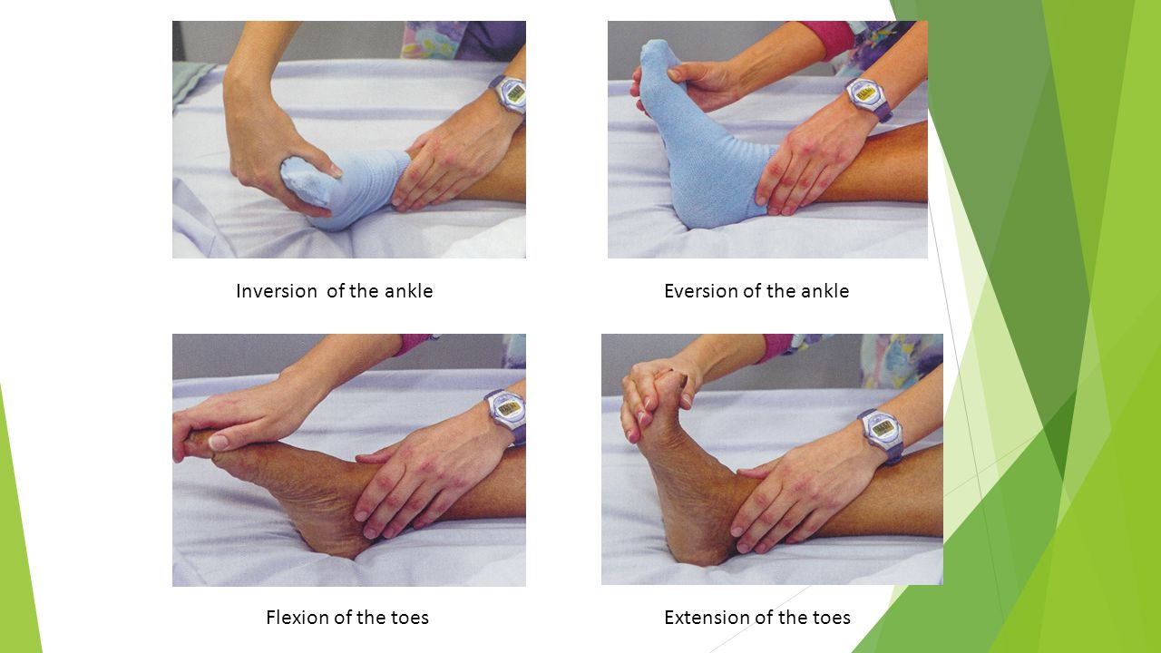 Inversion of the ankle Eversion of the ankle Flexion of the toes Extension of the toes