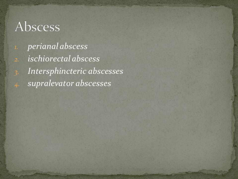 Abscess perianal abscess ischiorectal abscess
