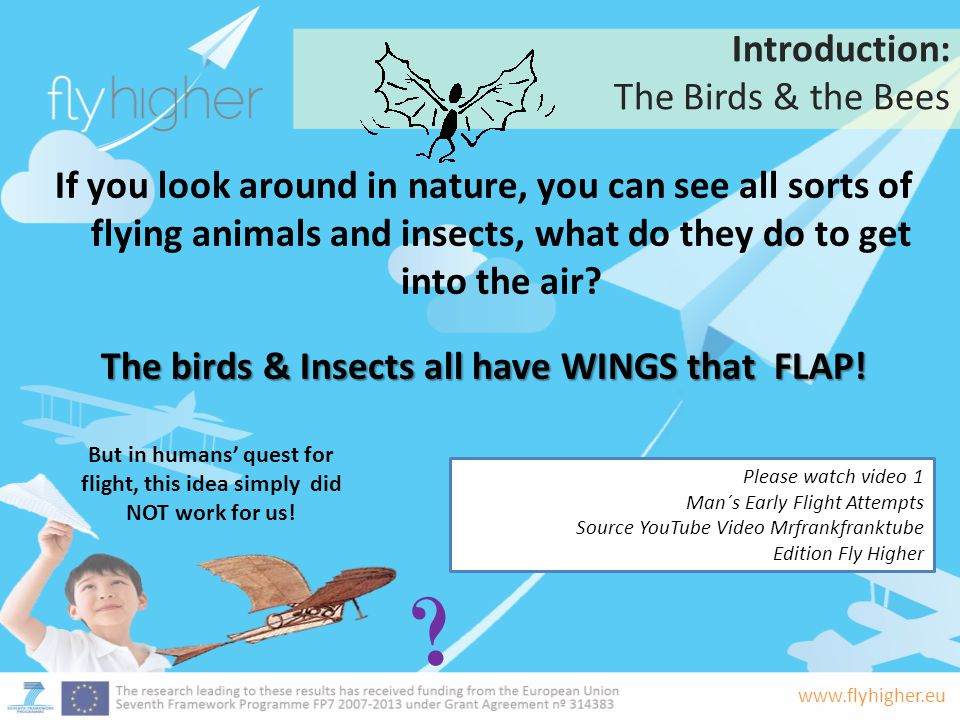 Introduction: The Birds & the Bees