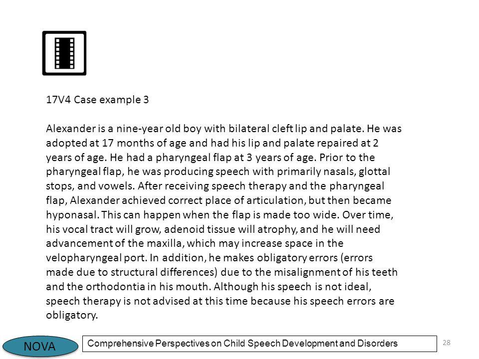17V4 Case example 3