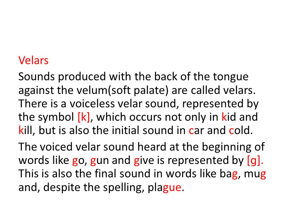 Velars Sounds produced with the back of the tongue against the velum(soft palate) are called velars.