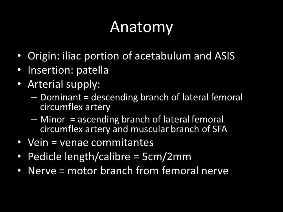 Anatomy Origin: iliac portion of acetabulum and ASIS