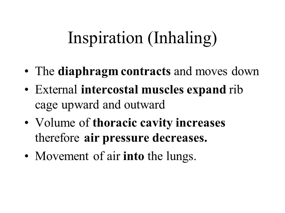 Inspiration (Inhaling)