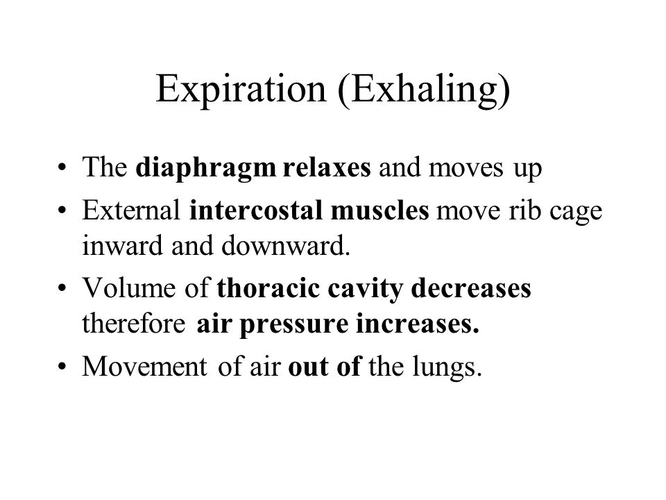 Expiration (Exhaling)