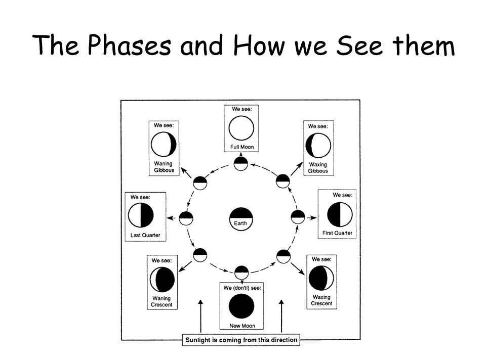 The Phases and How we See them