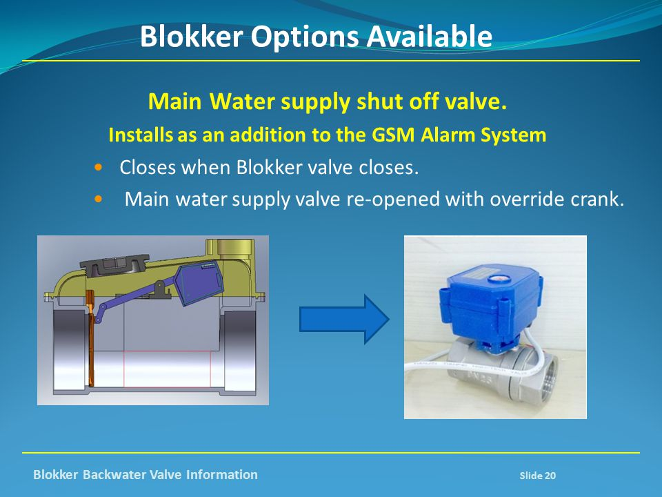 Blokker Options Available