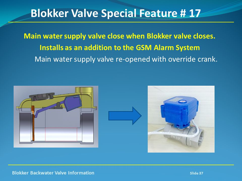 Blokker Valve Special Feature # 17