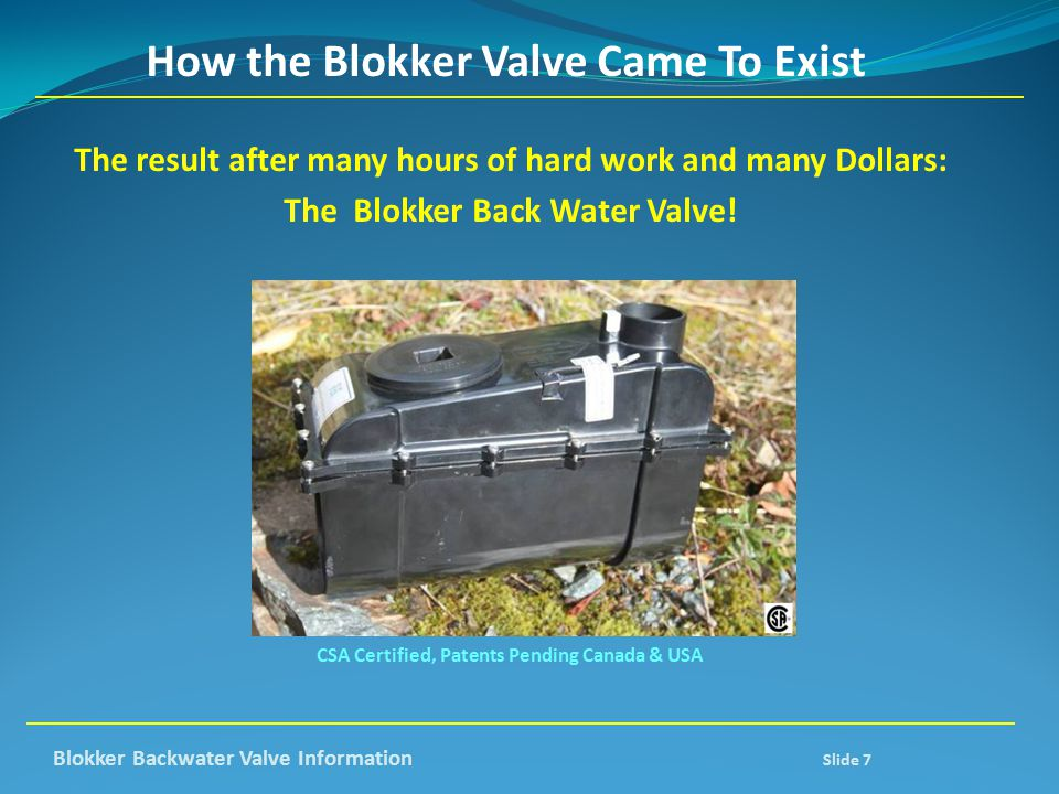 How the Blokker Valve Came To Exist
