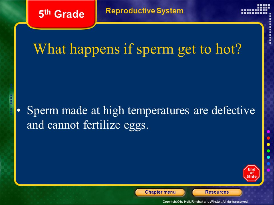 What happens if sperm get to hot