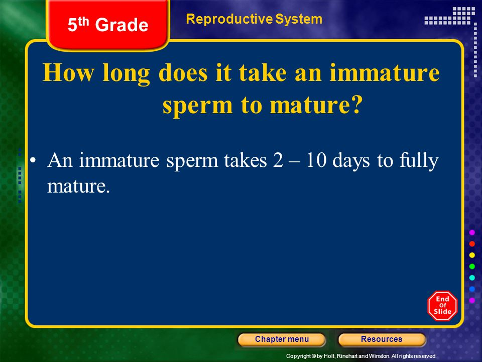 How long does it take an immature sperm to mature