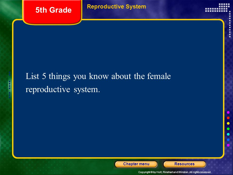 List 5 things you know about the female reproductive system.