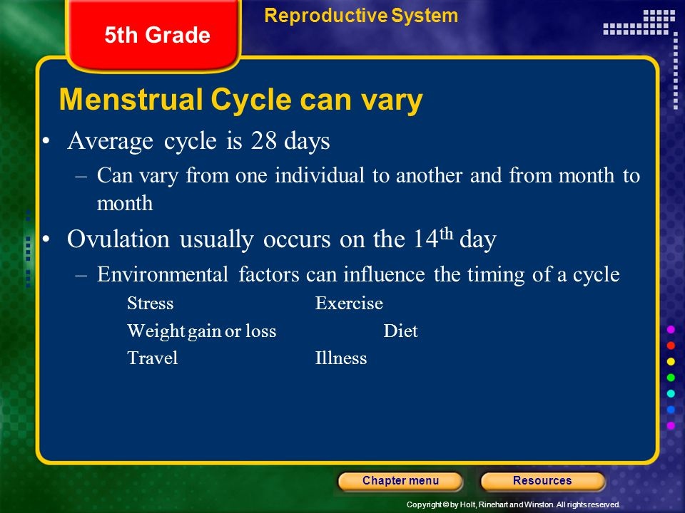Menstrual Cycle can vary