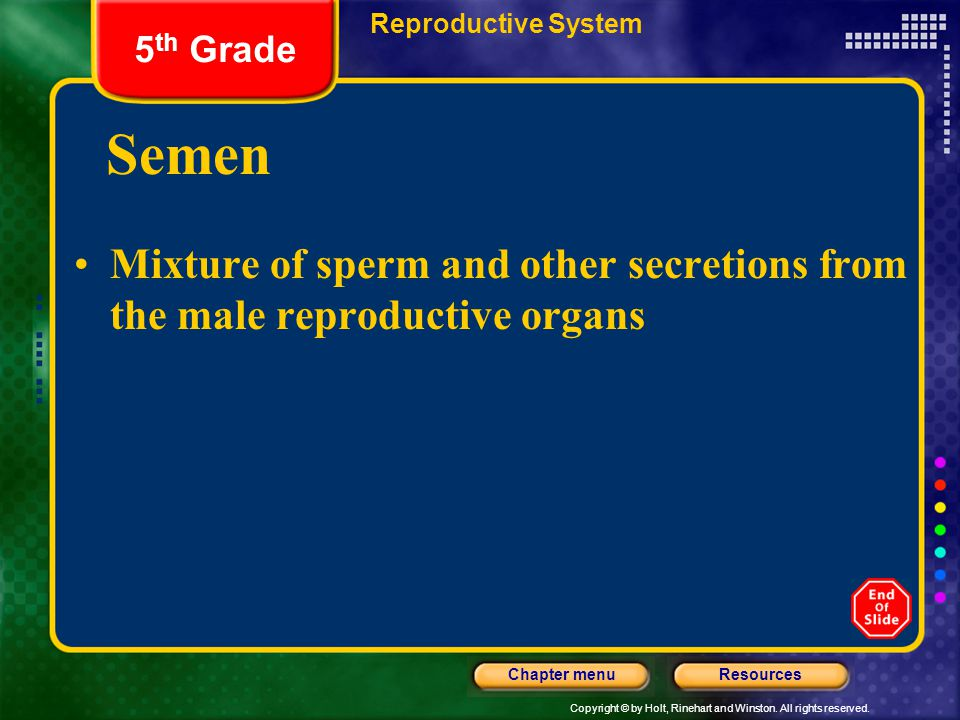 Reproductive System 5th Grade. Semen. Mixture of sperm and other secretions from the male reproductive organs.