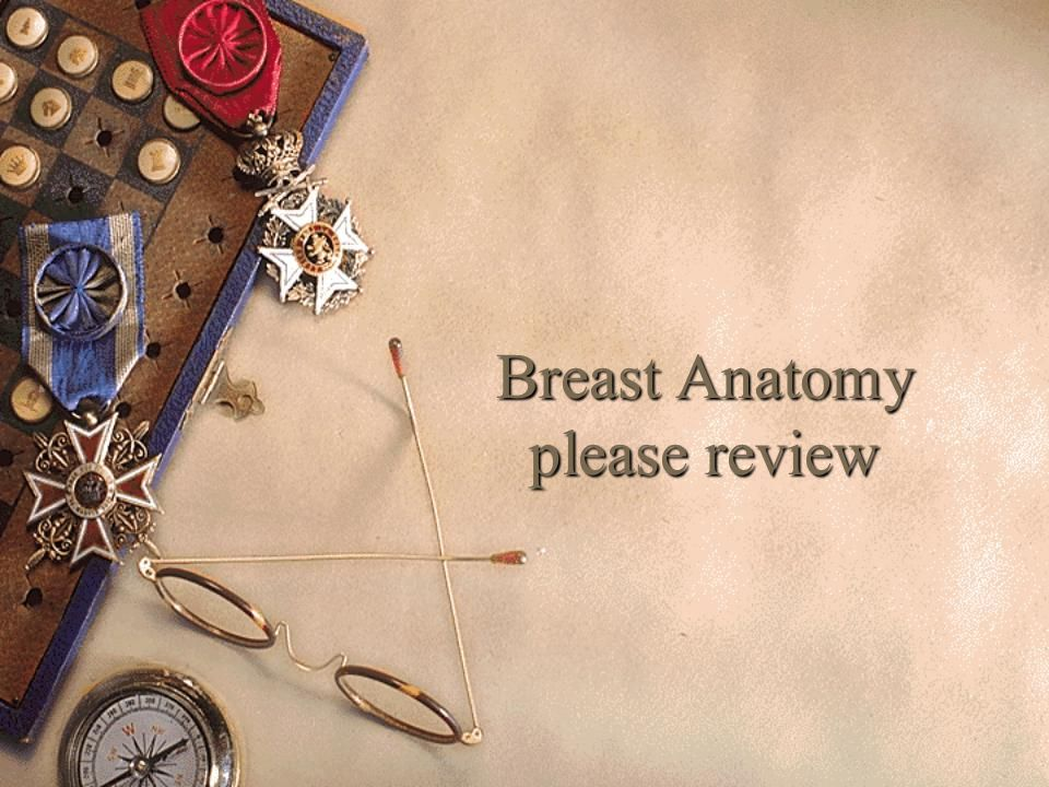 Breast Anatomy please review