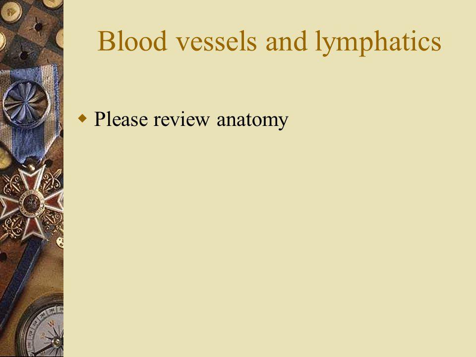 Blood vessels and lymphatics