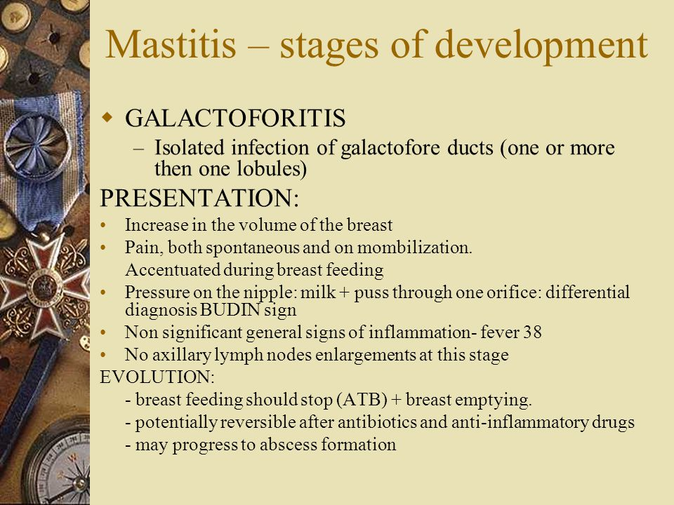 Mastitis – stages of development