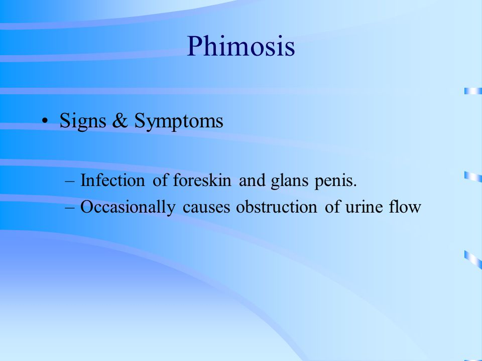 Phimosis Signs & Symptoms Infection of foreskin and glans penis.