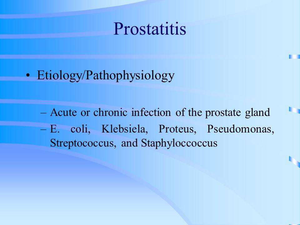 Prostatitis Etiology/Pathophysiology