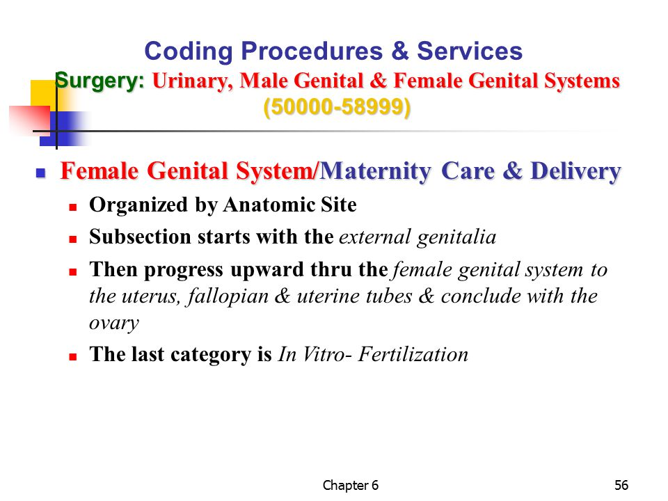 Female Genital System/Maternity Care & Delivery