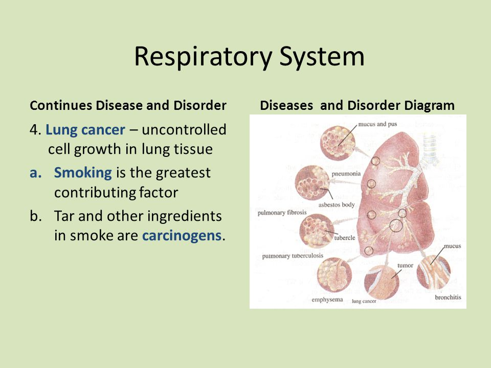 Diseases and Disorder Diagram