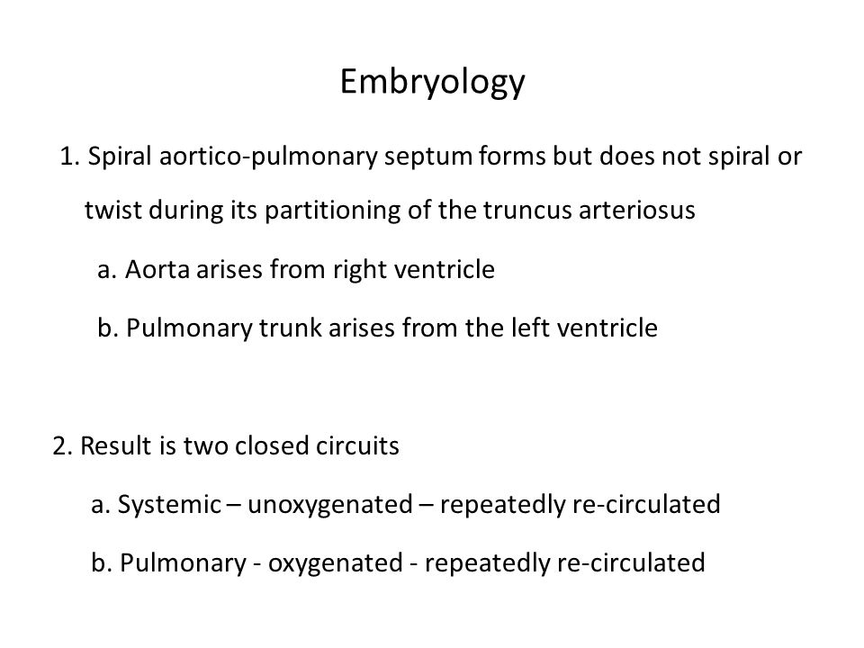 Embryology 1. Spiral aortico-pulmonary septum forms but does not spiral or twist during its partitioning of the truncus arteriosus.
