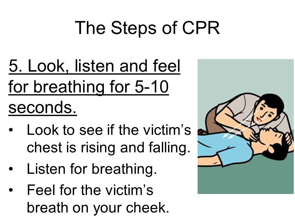 The Steps of CPR 5. Look, listen and feel for breathing for 5-10 seconds. Look to see if the victim's chest is rising and falling.