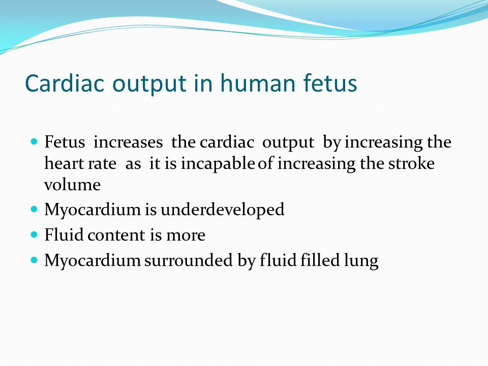 Cardiac output in human fetus