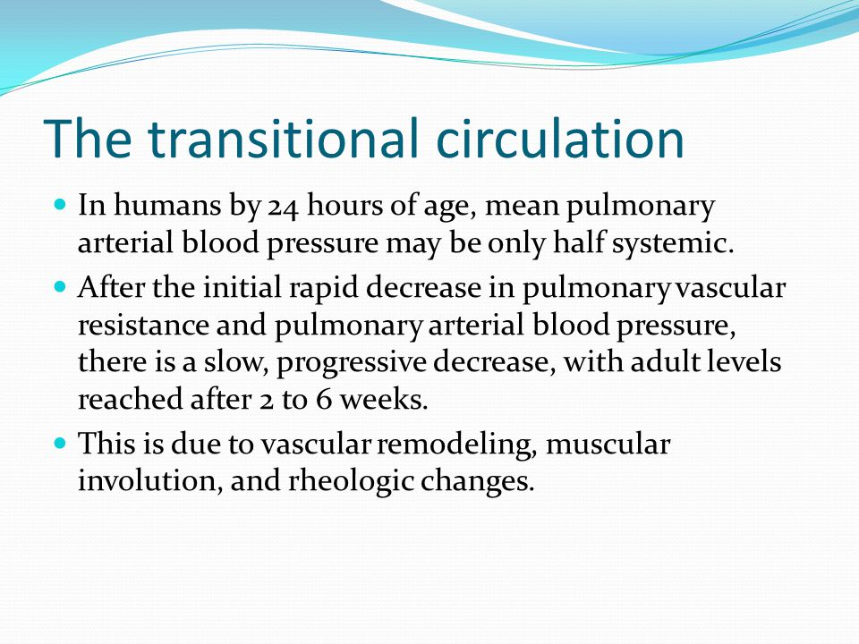 The transitional circulation