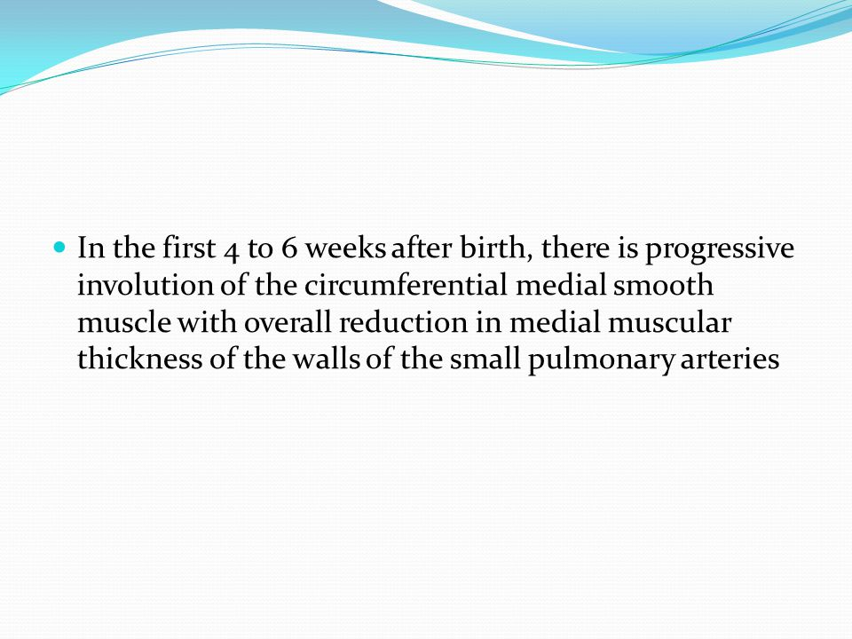 In the first 4 to 6 weeks after birth, there is progressive involution of the circumferential medial smooth muscle with overall reduction in medial muscular thickness of the walls of the small pulmonary arteries