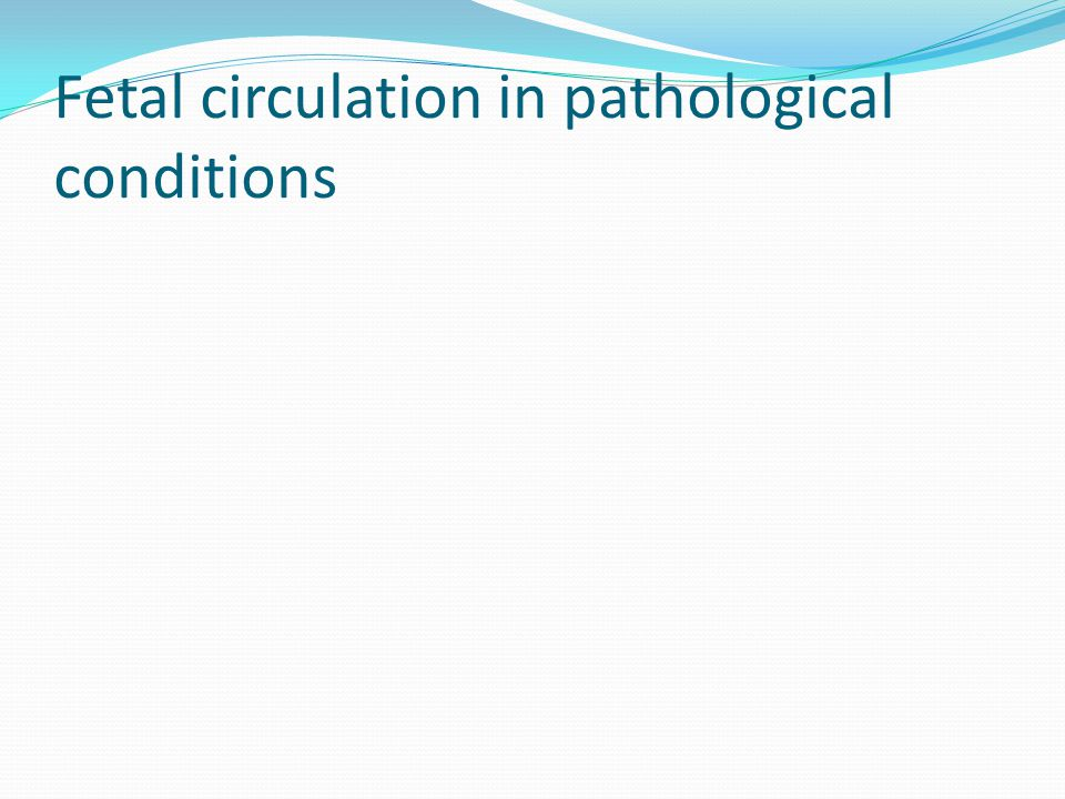 Fetal circulation in pathological conditions