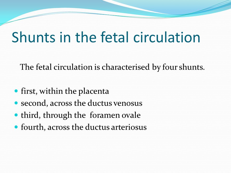 Shunts in the fetal circulation