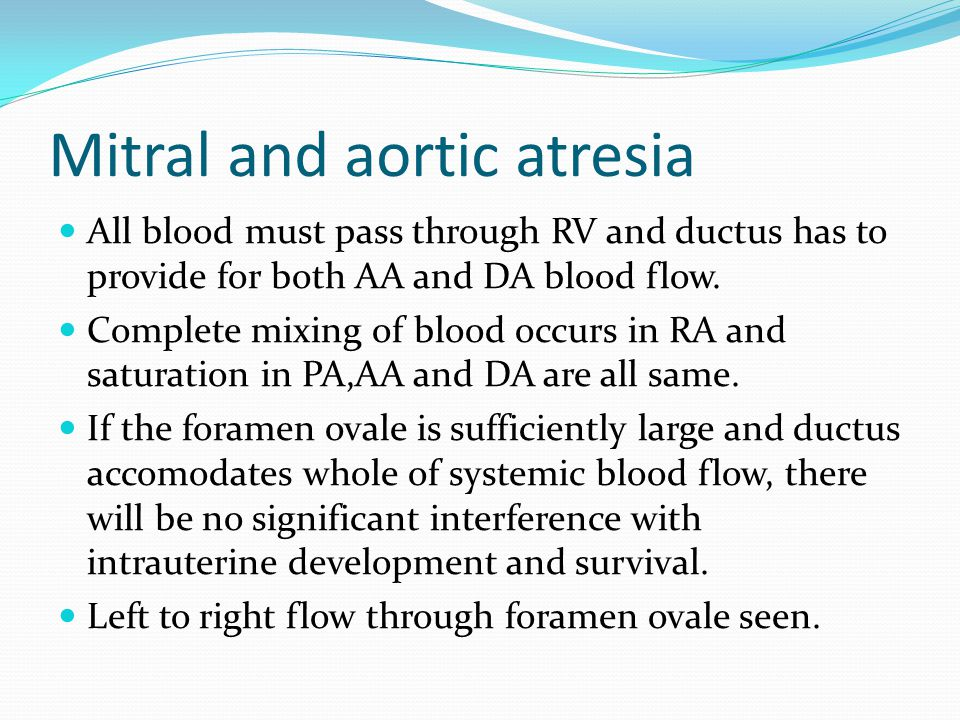 Mitral and aortic atresia
