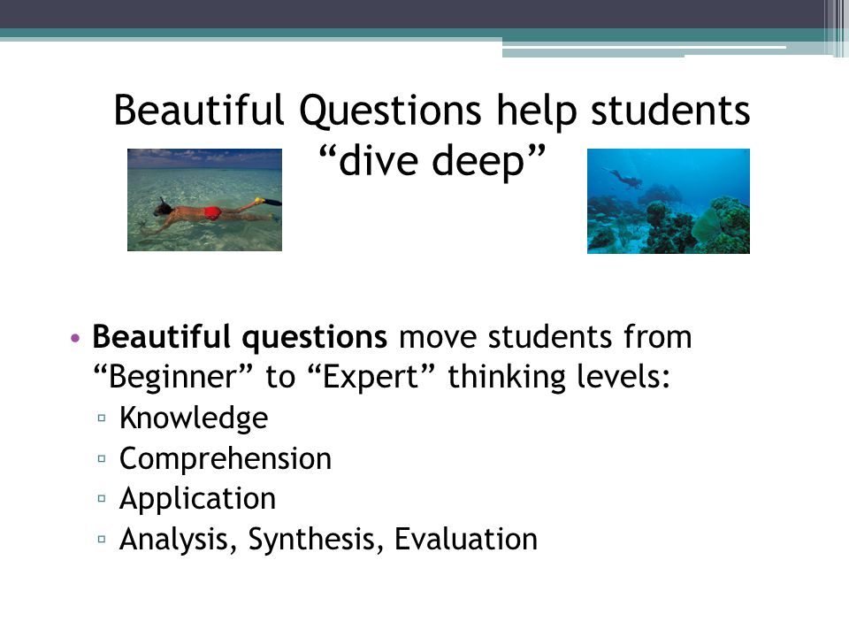 Beautiful Questions help students dive deep