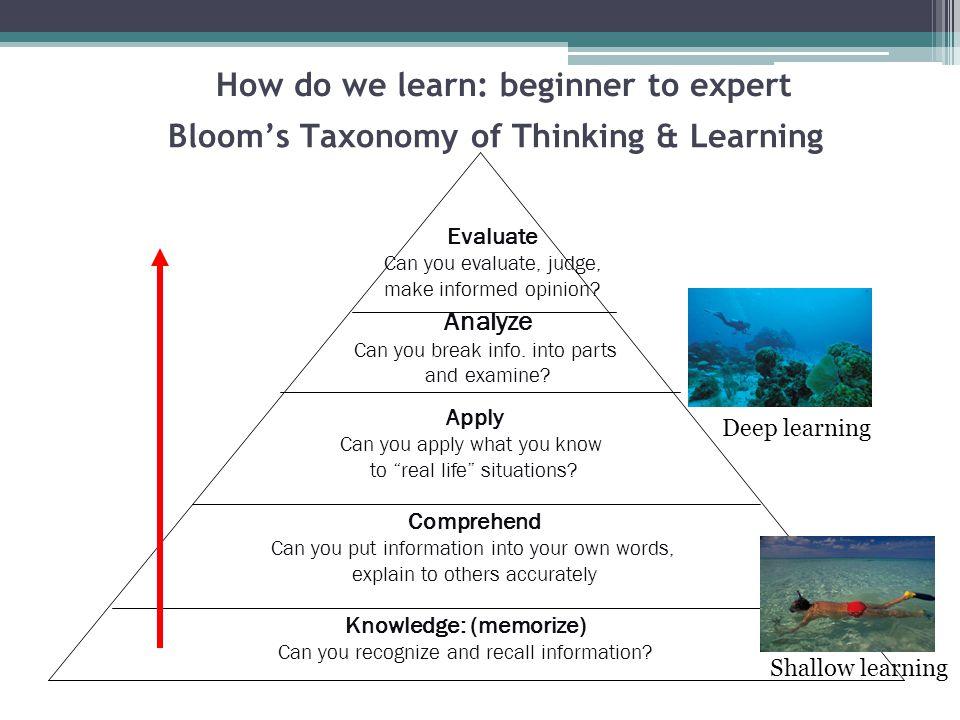 How do we learn: beginner to expert