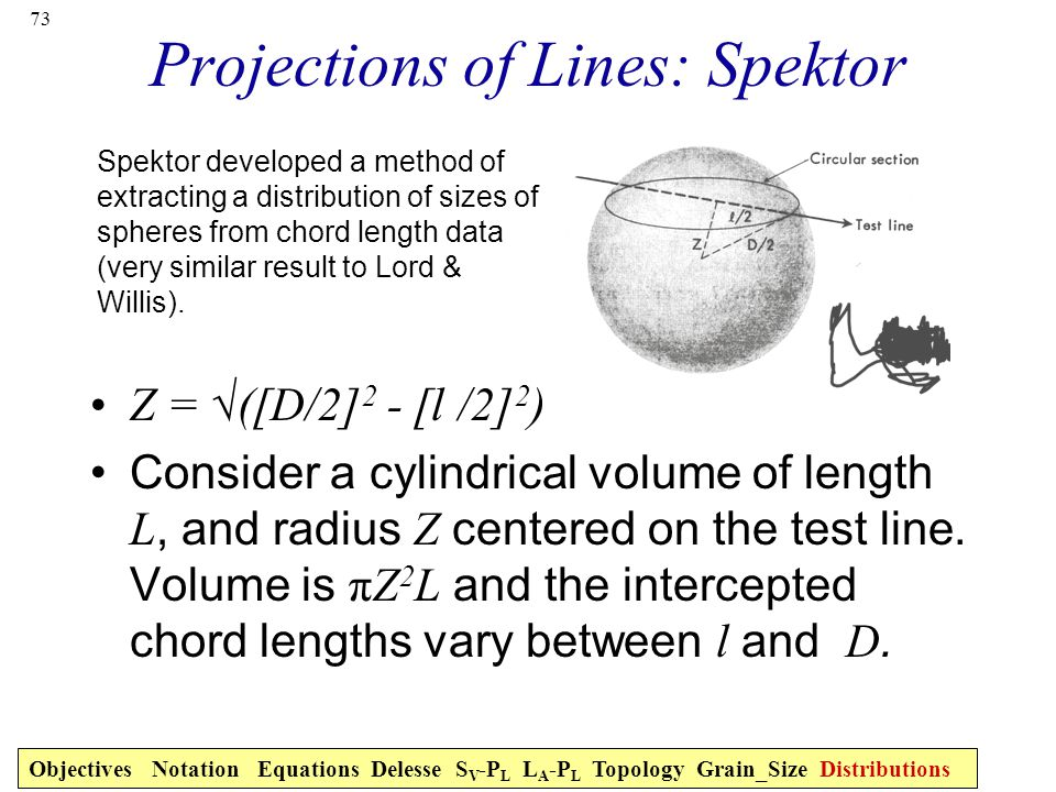 Projections of Lines: Spektor