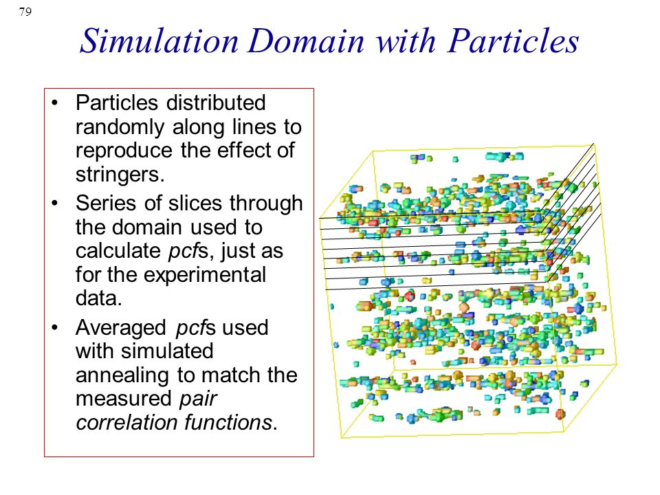Simulation Domain with Particles