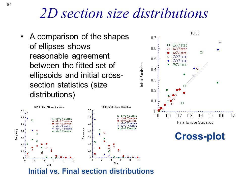 2D section size distributions