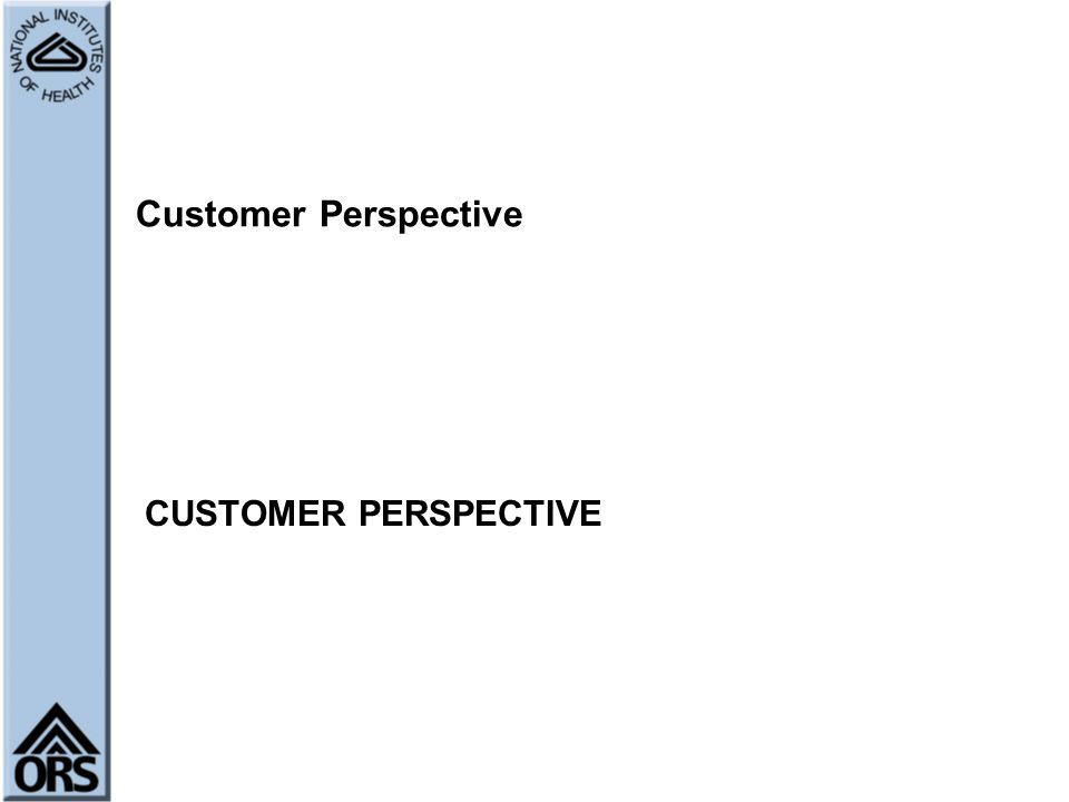 Customer Perspective CUSTOMER PERSPECTIVE